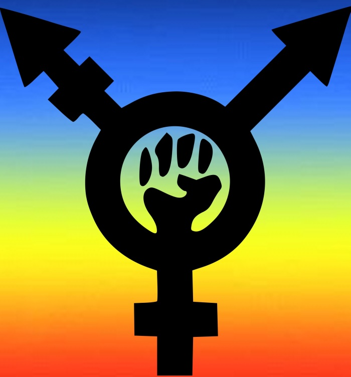 Transfeminism Rainbow