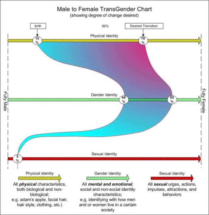 TransGender Degree of Change Chart GenderID-MF